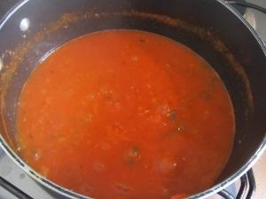 molho de tomate (4)