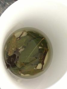 chá de espinheira santa, para quem sofre de azias (refluxo e gastrite)